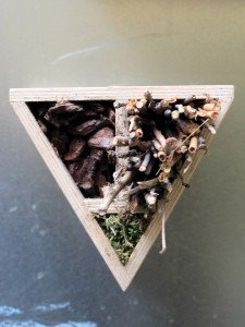 Tribox - arte bambini natura